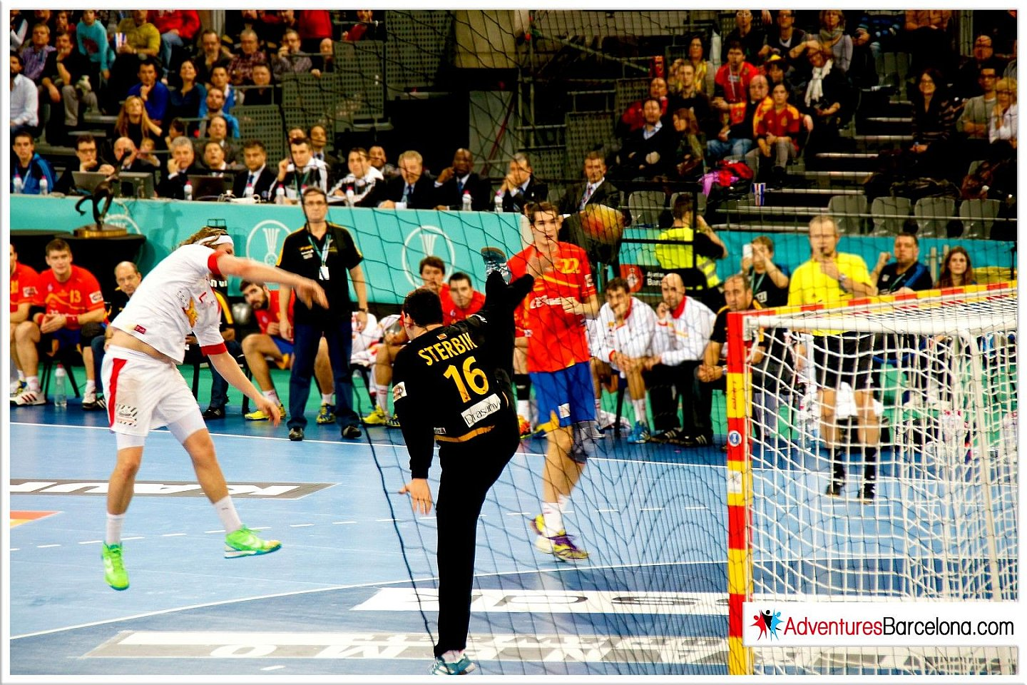 World Handball