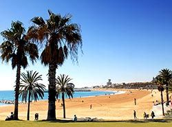 Attractions in Barcelona - Beaches in Barcelona