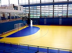 Great training facilities in Spain for teams on handball camps in Barcelona
